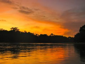 sunset in the Amazon jungle